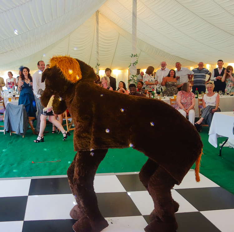 A wedding with a difference - the couple's parents dressed as a brown pantomime horse having fun on the dance floor!